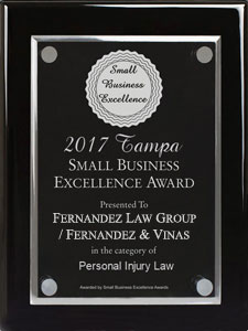 2017 Tampa Small Business Excellence Award